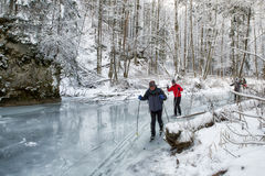 Cross-country skiing in winter forest stock photo