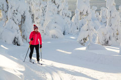 Cross country skiing Royalty Free Stock Image