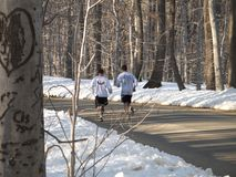 Cross Country Training. This is a shot of two runners training on a country road stock photos