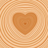 Cross cut of a log with dark pith stock in the shape of a heart. Cross cut of a log with annual rings with dark pith stock in the shape of a heart Royalty Free Stock Photography
