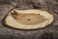 Cross cut wood texture Royalty Free Stock Photo