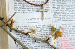 Cross and Easter scripture with flowers Royalty Free Stock Photography