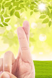 Cross finger gesture on green field background Stock Image