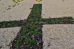 Cross from flowers on the ground. Christian cross made by flowerbed on a grit ground Royalty Free Stock Photo