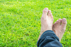 Cross foot on the green grass in the sunshine. Stock Image