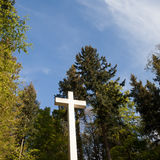 Cross in forest Royalty Free Stock Image