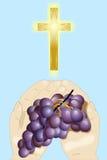 Cross and grape 5 Stock Photos
