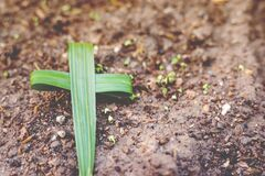 Free Cross Green Palm Leaves As Background. Royalty Free Stock Photography - 183710597