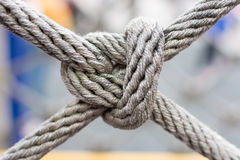 Cross Knot Stock Image