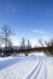 cross ślad narciarski kraju Obrazy Royalty Free