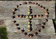 Cross Made of Acorns Encircled. A cross made of acorns within a circle laying on an old board Royalty Free Stock Photos