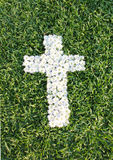 Cross made from daisy flowers. White cross made from daisy flowers Stock Photography