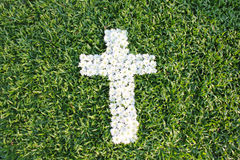 Cross made from daisy flowers. White cross made from daisy flowers Stock Photo