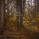 Cross in the misty forest Stock Photo