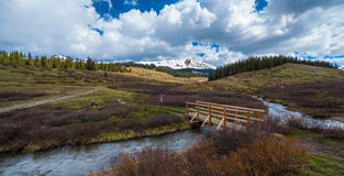 Cross Mountain Lizard Head Peak Colorado Rocky Mountains Landsca Stock Image