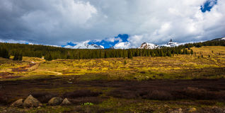 Cross Mountain Lizard Head Peak Colorado Rocky Mountains Landsca Stock Image