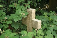Cross overgrown with brambles. Cross shaped gravestone is overgrown by brambles Stock Photo