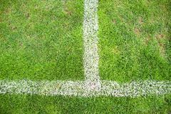 Cross of painted white lines on natural football grass. Artificial green turf texture. Royalty Free Stock Image