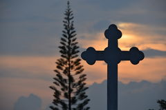 Cross and pine silhouette. Cross and pine  silhouette , have background is sunset Stock Photo