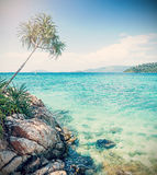 Cross processed picture of rocky shore. Royalty Free Stock Photo