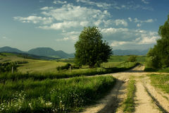 Cross-road of rural road. Beautiful summer landscape in Slovakia Stock Images