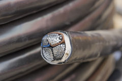 Cross section of black industrial underground cable 3 Royalty Free Stock Photos
