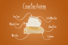 Cross section of a cream bun. Royalty Free Stock Photos
