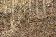 Cross section of dirt background 2 Stock Images