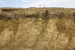 Cross section of dirt Royalty Free Stock Image