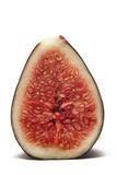 Cross section of a fig Stock Photography