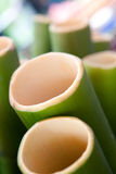 Cross section of fresh green bamboo Royalty Free Stock Image
