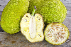 Cross-section of giant Jack-fruit. Royalty Free Stock Images