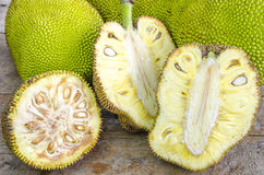 Cross-section of giant Jack-fruit. Stock Images