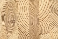 Cross-section of glued wooden timber of pine. stock images