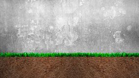 Cross section of grass and soil, on gray concrete wall background stock photography