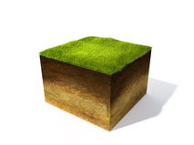 Cross section of ground with grass Royalty Free Stock Images