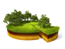 Cross section of ground with grass. 3d illustration of cross section of ground with grass isolated on white Royalty Free Stock Photos