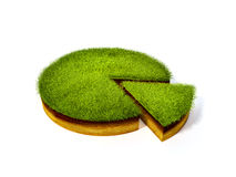 Cross section of ground with grass Stock Image