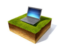Cross section of ground with grass Royalty Free Stock Image