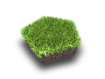 Cross section of ground with grass isolated on white Stock Photos