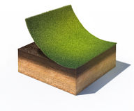 Cross section of ground with part of lawn. 3d rendered illustration of cross section of ground with part of lawn isolated on white Stock Image