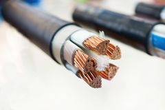 Cross section of high-voltage cable. Thick copper veins are surrounded by a thick layer of polymer insulation Stock Photos