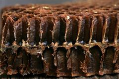 Cross-section through the interior of an old honeycomb. Stock Photo