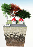 Cross-section of land with street trees home car Royalty Free Stock Photography