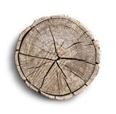 Big tree trunk slice cut from the woods. Textured surface with rings and cracks. Neutral brown background made of hardwood. This cross section of a large tree royalty free stock photo