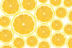 Cross section of lemon slices background.  Royalty Free Stock Photo