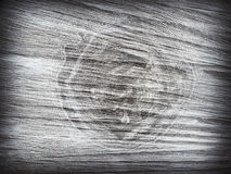Cross section log texture. Birch tree rings texture background. Wood background with copy space royalty free stock image