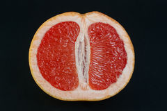 Cross-section of one grapefruit Royalty Free Stock Photos