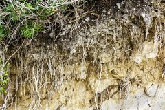 Cross section of pants and soil horizontal background royalty free stock photos