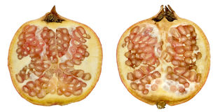 Cross section of pomegranate Stock Images